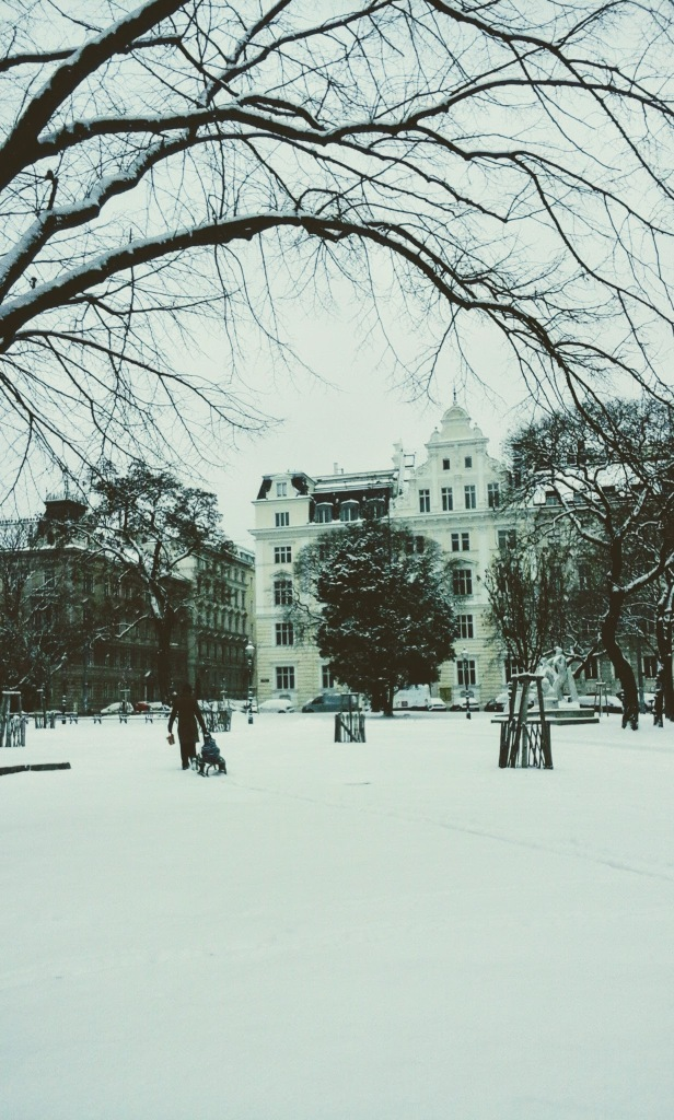 vienne-neige-noir-et-blanc