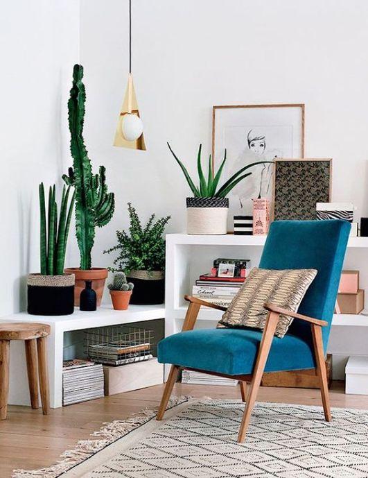 fauteuil et plantes coin lecture