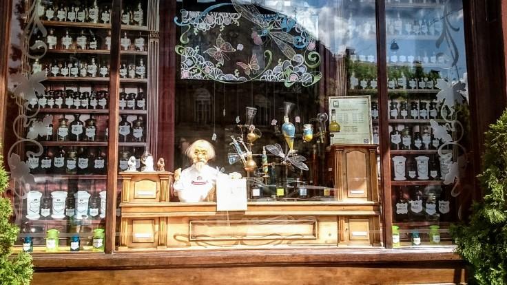 lviv vitrine