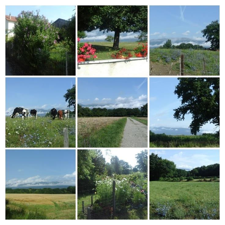 paysdegex.promenade