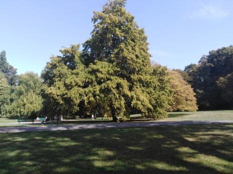 Parc De la Grange Genève