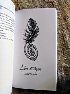 A hue et abysses, Attila Valpinson